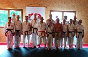 20150627-letztes Training mit Hanshi vor dem Sommertraining (Mittel)