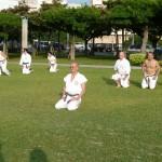karatedo_2015_ossi_stock (1)