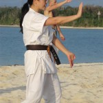 karatedo_2015_ossi_stock (29)