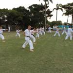karatedo_2015_ossi_stock (8)