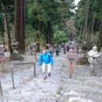 kyushu_2015_ossi_stock (47)