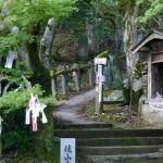 shikoku_2015_ossi_stock  (15)