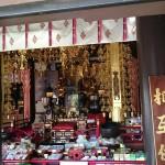 shikoku_2015_ossi_stock  (151)