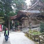 shikoku_2015_ossi_stock  (201)