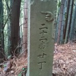 shikoku_2015_ossi_stock  (213)
