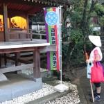 shikoku_2015_ossi_stock  (255)