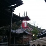 shikoku_2015_ossi_stock  (256)