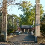 shikoku_2015_ossi_stock  (3)