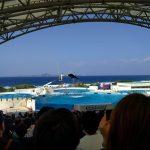 2018 Okinawa Training 17